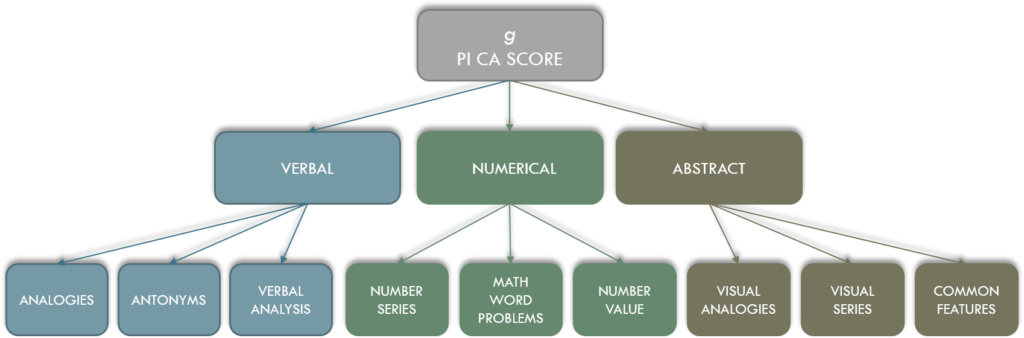 The Predictive Index PI Cognitive Assessment g-factor subcategorieën
