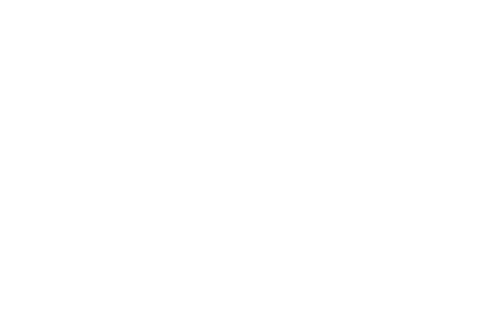 The Predictive Index Diagnose logo