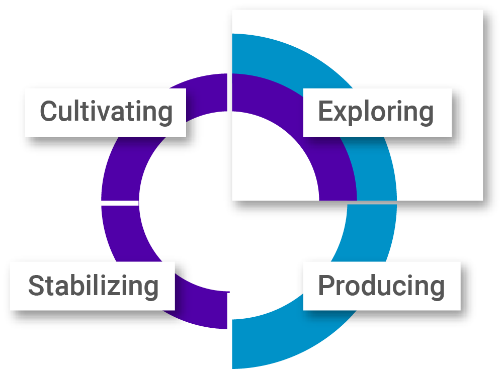PI cultural quadrants graphic