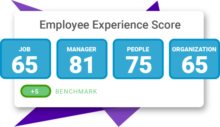 PI Employee Experience graphic