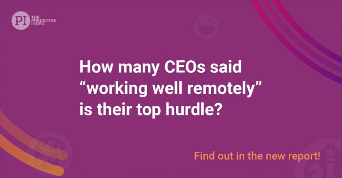 CEO_Report_Trivia_2