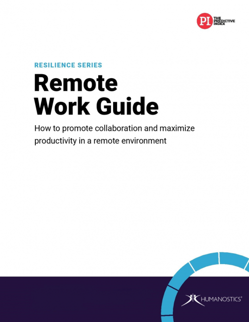 PI Remote Work Guide